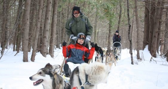 Dogsledding Experiences Dogsledding Ontario